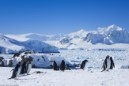 ANTARCTICA EXPEDITION CRUISE image