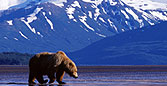 ALASKA & THE ALEUTIAN ISLANDS